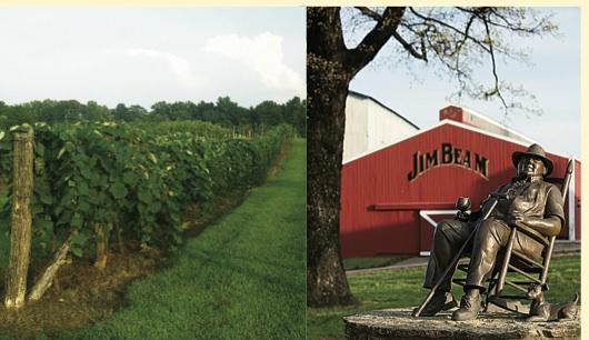 ケンタッキーで「ワイン&バーボンのツアー」を楽しむ