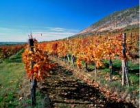 秋のハンガリー、旅のお勧めトップ3