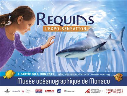 モナコ海洋博物館で新しい展覧会「シャーク」開催中