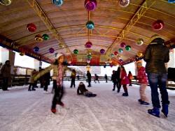冬のオランダを楽しむ(4) アイススケートの国でスケートに挑戦