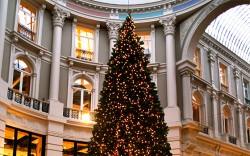 Kerstboom_Den_Haag