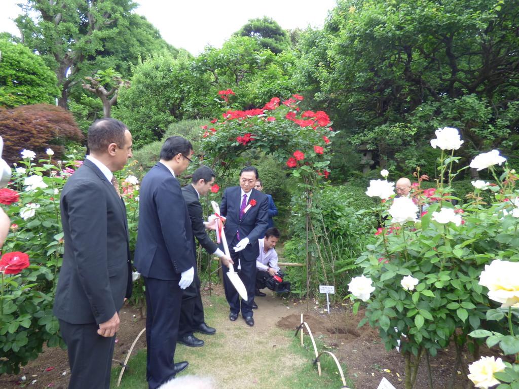 苗木に土をかける鳩山由紀夫元首相