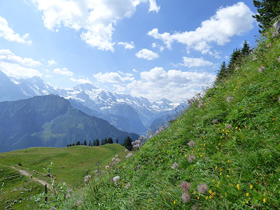 「スイスマウンテンピークス」に3名山が加わって充実のラインナップに!