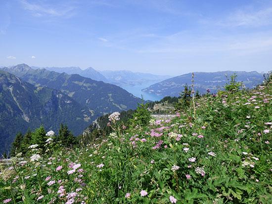 ボーナス特典も盛りだくさん! スイス「ベルナーオーバーラントパス」が販売開始