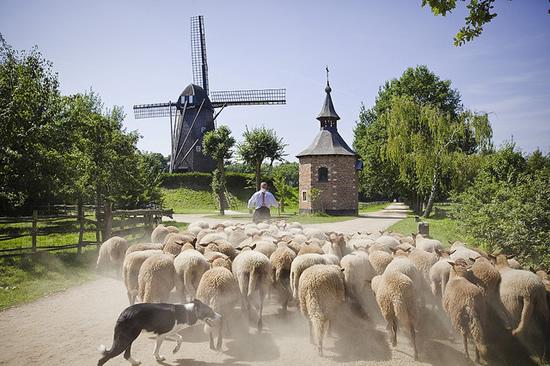 フランダースの民俗村「ボクレイク野外博物館」