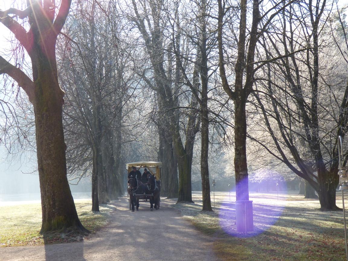 クリスマス限定!ヘルブルン宮殿庭園にフィアカーが登場