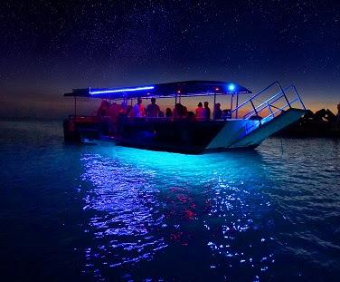 モートン島の「沈没船イルミネーション」ツアー