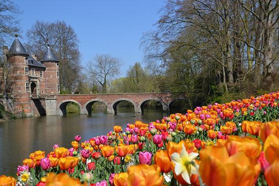 お城と球根花の共演「ブリュッセル・フロラリア」