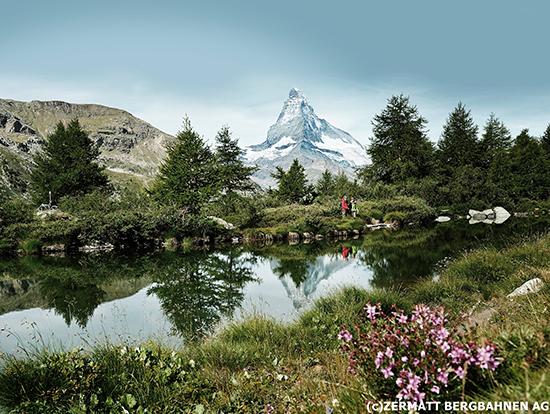 ベルトラ、スイス政府観光局協賛の春キャンペーンを開始
