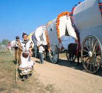 フラメンコ衣装を纏った巡礼者の行列「ロシオの巡礼祭」