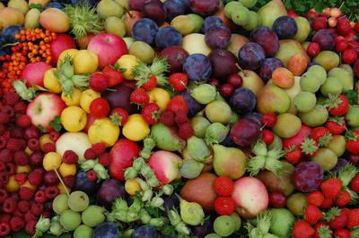ドベレ(ラトビア)の「アップル・フェスティバル」