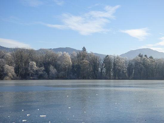 レオポルズクローン城の沼