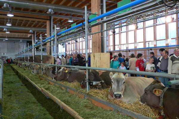 ザンクトガレンでスイス最大規模のフードフェア開催