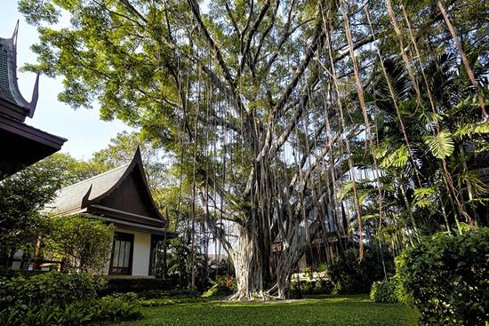 Chiva-Som-Banyan-Tree-H