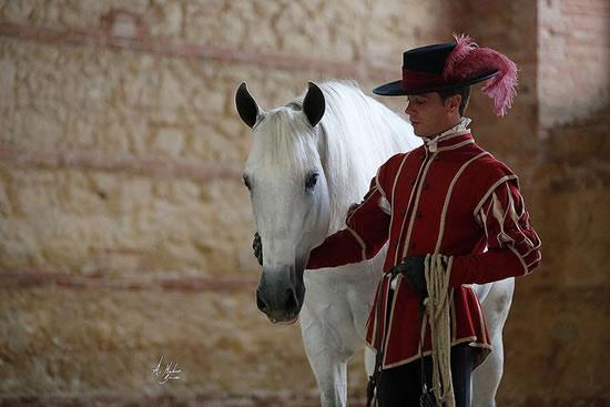 コルドバで馬術ショーを楽しんだら、バルで食べ歩きがスペイン流!