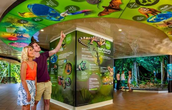 スカイレール、熱帯雨林の物語を日本語で提供開始