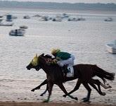アンダルシアの村でビーチ競馬を観戦する