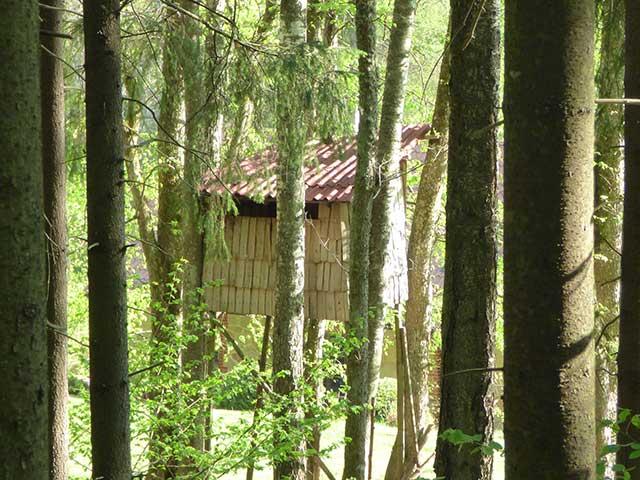 Latvia-Countryside_12