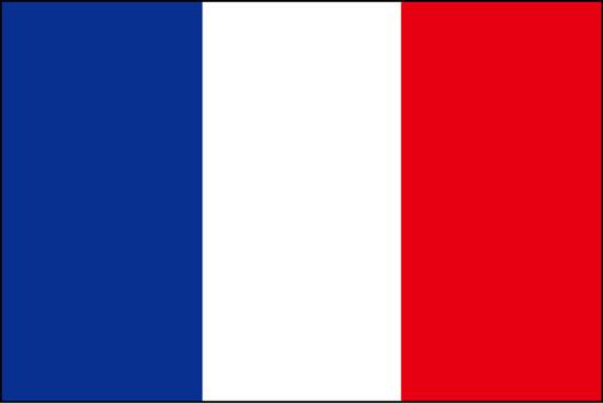 フランス、閉じられた公共空間でのマスク着用を義務化