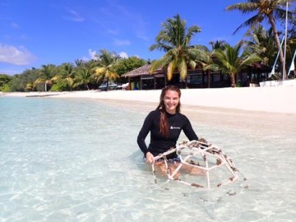 シェラトン・モルディブ・リゾート&スパの新たな海洋保全プログラム「Adopt a Coral」